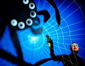 Spinnen Netz Kostüm